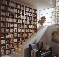 Оформление библиотеки в классическом стиле и хай-тек